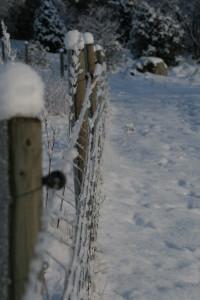 Staket i snö